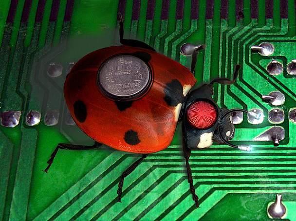 bug reparat