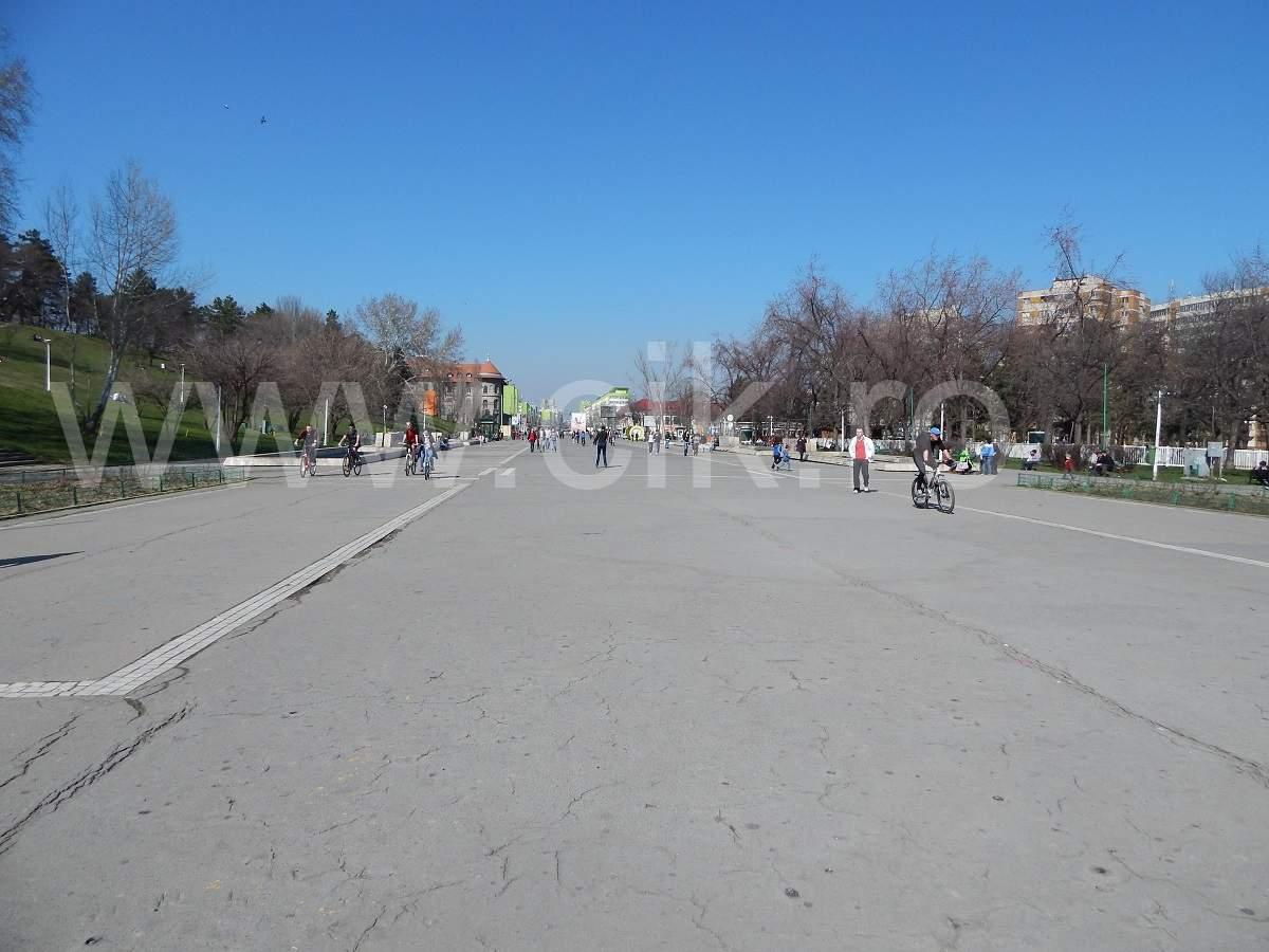 parcul tineretului sincai