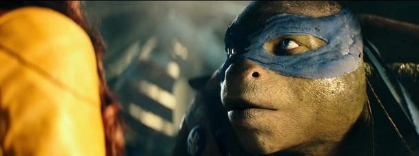 Teenage Mutant Ninja Turtles Testoasele Ninja