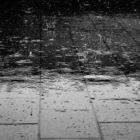 Nara's Rain