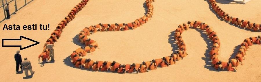 a treia persoana din the human centipede